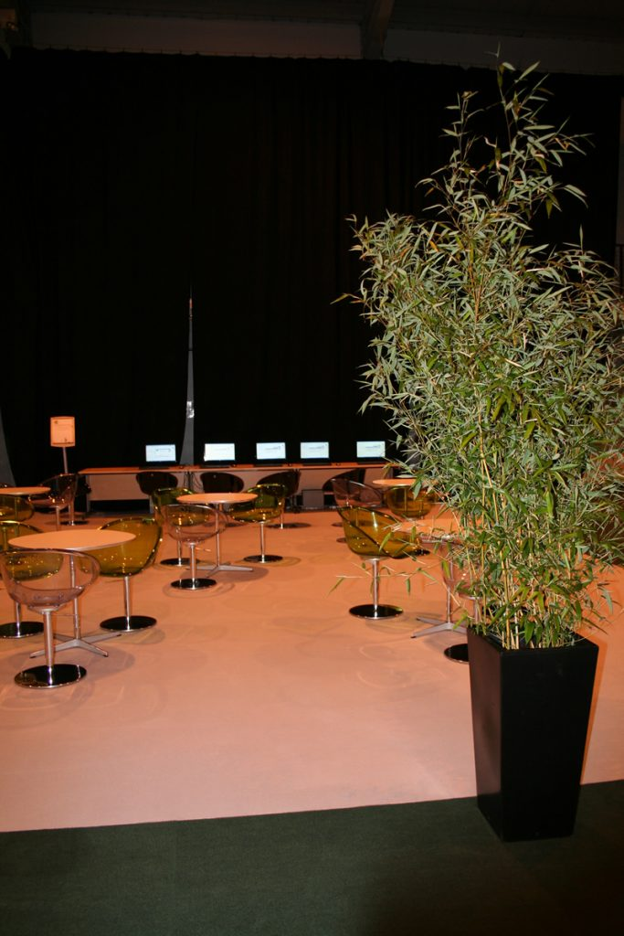 Sage Exhibition area dressed with hire bamboos
