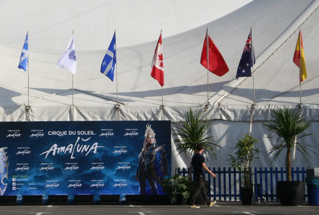 Cirque du Soleil hire palm trees to dress the entrance of their main marquee
