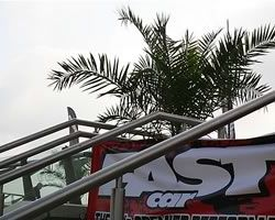 Fastcar and palms @ Doncaster race course