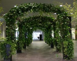 """Inside the hired Ivy arches @ The coop """"good with Food"""" awards"""