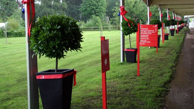 Stafford University hired Bay tree lollipops for their awards ceremony walkway