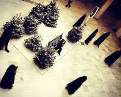 Fir trees hired for a winter set design
