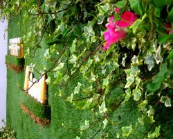 Roger & Gallet hired a living wall created for a product launch