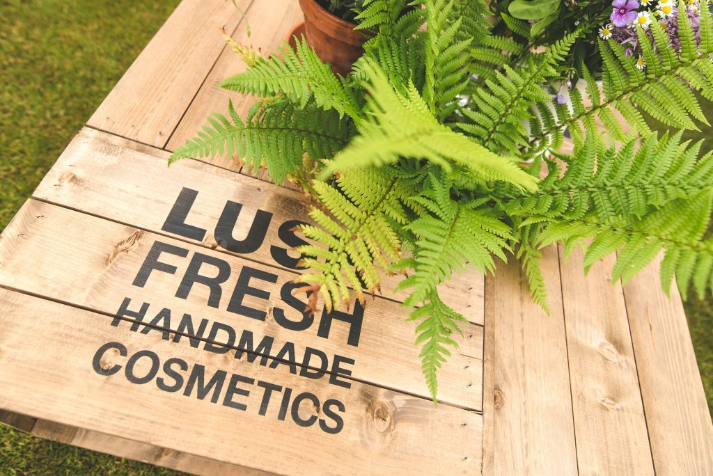 Hire Ferns placed inside a Lush cosmetics box @ their HQ in Poole, Dorset