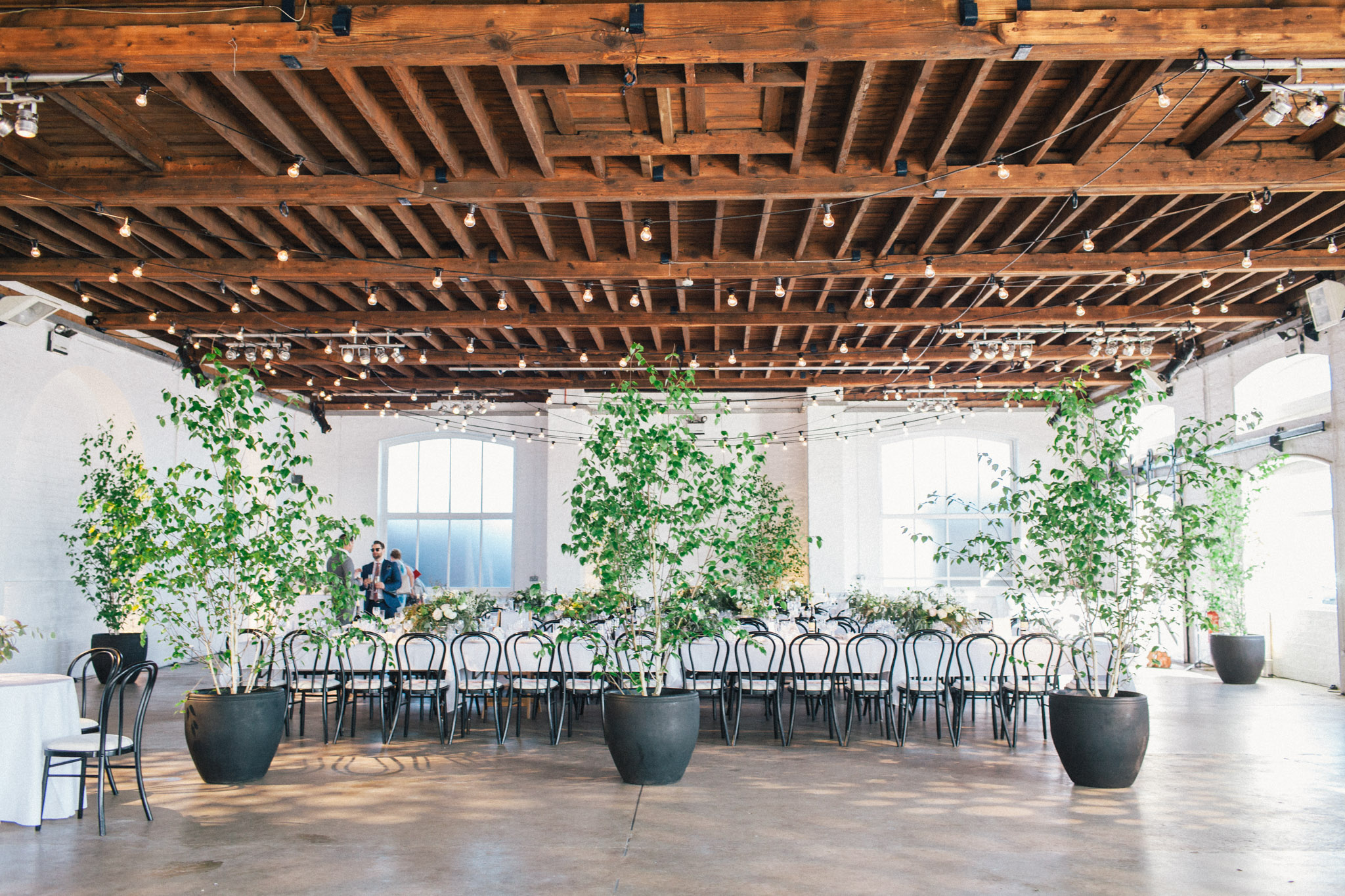 Venue dressed with hired greenery - with the addition of 6 small trees it is transformed into a cooler space