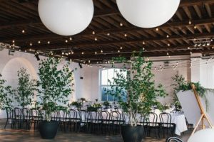 Wedding trees (Birch trees) at a dry hire venue.